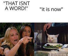 Cat Memes, Funny Memes, Jokes, Funny Stuff, Hilarious, Funny Tweets, Funny Cats, Random Stuff, Frases