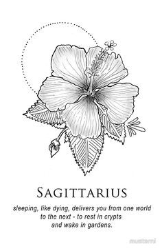 Sagittarius - Shitty Horoscopes Book X: Lovers & Losers