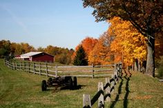 Fall at the farm - love the trees and fence
