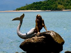 """""""Mermaid on a Rock"""" - Close up of one of three Mermaid sculptures on the beach at Daydream Island Resort in the Whitsunday Islands, Australia Fantasy Mermaids, Real Mermaids, Mermaids And Mermen, Mermaid Fairy, Mermaid Tale, Mermaid On Rock, Mermaid Sculpture, Sculpture Art, Mermaid Artwork"""