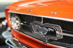 Pumpkin (Ford Mustang) Car