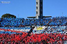La Hinchada más numerosa, fiel y seguidora #NocheTricolor Willis Tower, Twitter, Building, Travel, Club Nacional De Football, Uruguay, Positive Quotes, Viajes, Buildings