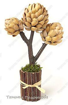 Мастер-класс Моделирование: Фисташковое деревце Дерево, Материал природный, Пластилин, Скорлупа ореха