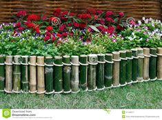 jardines con bambu - Buscar con Google