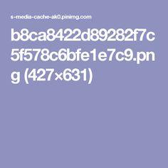 b8ca8422d89282f7c5f578c6bfe1e7c9.png (427×631)