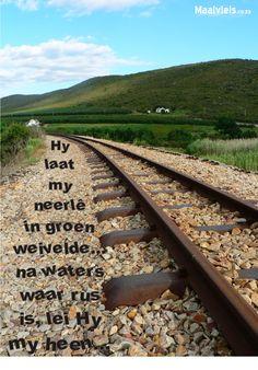 In vandag se gejaade lewe smag ons almal na groen weivelde en waters waar rus is...