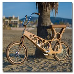 Hoopy - Lightweight Wooden Bicycle