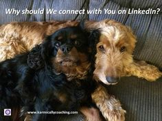 Ever been asked the So What question? 9 reasons LinkedIn invitations are immediately rejected via @karmically