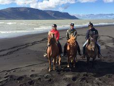 Reiten am Strand in Island! Ein einmaliges Erlebnis! <3 #island #horses #travel #reiten