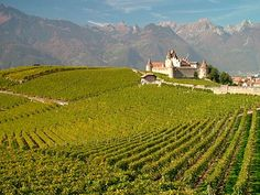 Take a tour round Switzerland's seldom visited wine region on Lake Geneva's shores, where some of Europe's finest wines are produced and enjoyed. #switzerland #europe