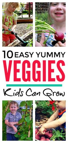 Fun gardening with kids - yummy vegetables to get children growing plants. Easy DIY activities for small gardens and the classroom to help kids including preschoolers explore seeds, soil and lifecycles and encourage picky eaters to eat veggies Growing Plants, Growing Vegetables, Learning Activities, Activities For Kids, Outdoor Activities, Outdoor Learning, Spring Activities, Creative Activities, Creative Play