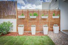 Arq. Luis Pedro Abreu | Exteriores | Outdoor | Garden | Jardim  | Garden | Plants | Potted Plants | Wall Plants