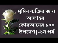 God's admonition for the believer | মুমিন ব্যক্তির জন্য আল্লাহর উপদেশ ||... Quran Tilawat, Letter Board, Meant To Be, Believe, God, Lettering, Dios, Drawing Letters, Allah