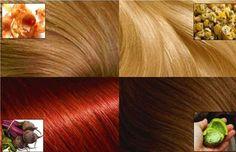 Les dangers des produits chimiques sont quelque chose qui ne doivent pas être ignorés, surtout si vous visitez fréquemment un salon pour colorier vos cheveux ou acheter un produit en boîte et le faire vous-même. Il existe environ 5000 produits chimiques différents utilisés dans les colorants capillaires, dont beaucoup