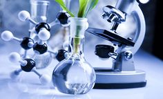 Need Biotechnology Essay Writing Help? Instant Essay Writing's experts provides best Biotechnology Essay help to students at best price, we also offer best discount to the students on writing service. Masters In Nursing, Top Colleges, Clinical Research, College Fun, Biochemistry, Training Center, Market Research, Life Science, Science Student