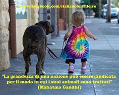 """""""La grandezza di una nazione può essere giudicata per il modo in cui i suoi animali sono trattati""""  (Mahatma Gandhi)"""