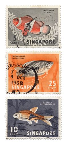 Series of vintage fish stamps from the 1960s - Singapore
