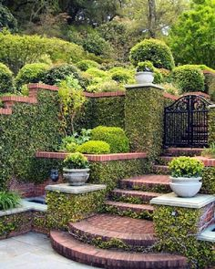 Traditional Landscape Design Ideas, Pictures, Remodel and Decor Outdoor Landscaping, Outdoor Gardens, Outdoor Decor, Landscaping Ideas, Landscape Bricks, Landscape Design, Path Design, Garden Design, Design Ideas