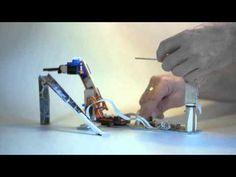 Micro Servo Robot - YouTube
