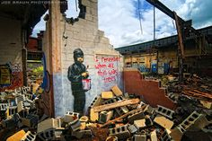 Banksy--I remember when all this was trees--Packard Plant, Detroit -- © 2010 Joe Braun Photography