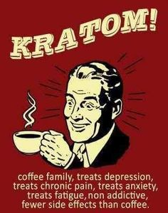 "Kratom Tea is ""thought"" to help with depression, anxiety, aches and pains and helps to improve your mood. Anxiety Relief, Pain Relief, Mitragyna Speciosa, Mood Enhancers, How To Treat Anxiety, Tea Benefits, Health Benefits, Fibromyalgia, Eating Clean"