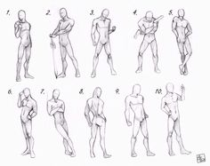 Draw men's anatomy