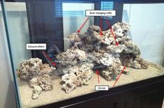 Saltwater Aquascape Design Ideas Design Your Aquascape How You Want It And If It Sucks
