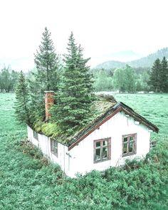 ⠀⠀⠀⠀⠀ Ich wette, es riecht innen und außen nach einem Kiefernwald!! Cabin, House Styles, World, Hair Styles, Home Decor, Fashion, Hair Plait Styles, Moda, Decoration Home