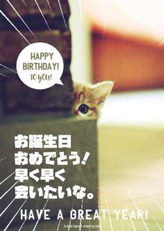 Harry Birthday, It's Your Birthday, Birthday Wishes, Birthday Cards, Happy Birthday Animals, Birthday Photos, I Am Happy, Merry Christmas, Entertaining