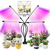 Grow Light for Indoor Plants -Plant Light with Upgraded Version 80 LED Lamps with Full Spectrum & Red Blue Dimmable Level, Adjustable Switch Modes - Modern Indoor Plant Lights, Big Indoor Plants, Grow Lights For Plants, Plant Lighting, Indoor Flowers, Growing Plants Indoors, Growing Vegetables, Best Led Grow Lights, Grow Light Bulbs