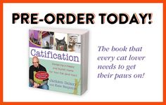 """Pre-Order """"Catification"""" by Jackson Galaxy & Kate Benjamin and Help Support Cat Rescue!"""