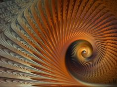 Ancient Coral Nautilus by Platinus on deviantART