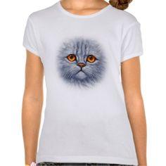 Fluffy Gray Tabby Cat Kitten Face