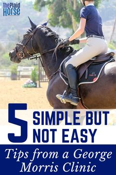 grooming Funny Horse Equine Pony Dressage Show Jumping T Shirt Clothing Gift