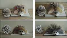 Folded Book - Porcupines (by clara maffei)