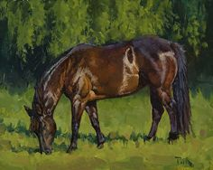 """Just Like Chocolate"" ~ Carol Peek Oil ~ 8 x 10 Arte Equina, Horse Artwork, Horse Paintings, Mediums Of Art, American Saddlebred, Horse Barns, Horse Stalls, Appaloosa Horses, Painting Of Girl"