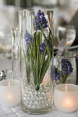 DFW Glass & Vase - Centerpiece ideas