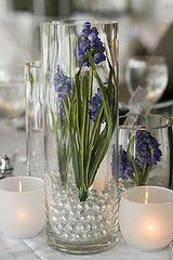 DFW Glass & Vase - Centerpiece ideas