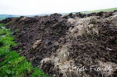 Manure moved to location prior to 6 months rotting down and spreading at Riverford Organic