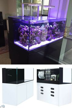SAIO aquariums incorporate the AIO's all-inclusive and compact simplicity and high-quality filtration power. Traditionally, AIO's are considered to be underpowered due to their space constraints, this isn't the case with 100G SAIO. By adding patented ultra-compact equipment, CAD Lights are able to truly produce an AIO aquarium with the power of a sumped system, unlike any other on the market. Wall Aquarium, Glass Aquarium, Home Aquarium, Aquarium Filter, Saltwater Aquarium, Aquarium Fish Tank, Planted Aquarium, Kitchen Furniture, Furniture Design