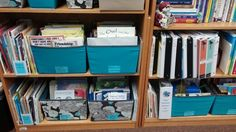 Organizing my elementary counseling books & lessons...Target bins & adhesive Post-it labels