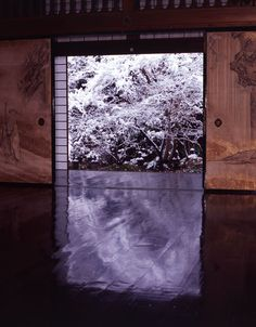 4 Season colors are reflected in black with polished wooden floor, Jissoin Iwakura, Kyoto, Japan.