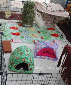 118 best guinea pig cage ideas cavy diy images guinea pigs rh pinterest com