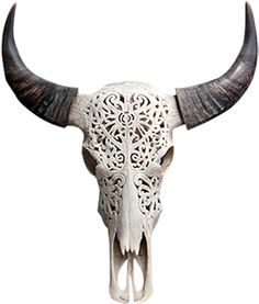 cow skull | Bali carved cow skull is new style carving, so interesting to put on ...
