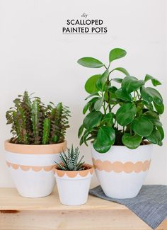 I've had a soft spot for scalloped designs as long as I can remember, from dress hems to collars. and now pots. Make these DIY scalloped painted pots! Last Minute Diy Mother's Day Gifts, Mother's Day Diy, Pots D'argile, Plant Pots, Painted Clay Pots, Diy Mothers Day Gifts, Diy Planters, Terracotta Pots, Indoor Plants
