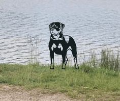 Rottweiler Metal Dog Garden Art Dog Garden, Garden Art, Metal Birds, Animal Silhouette, Rottweiler, Gates, Art Decor, Moose Art, Dogs