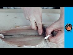 How to fillet and skin a trout the right way - YouTube