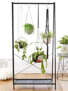 Indoor Garden Ideas for Wannabe Gardeners in Small Spaces Check out No patio? No problem. You can still build a lush summer garden inside your four .Check out No patio? No problem. You can still build a lush summer garden inside your four . Decor, Hanging Plants, Indoor Garden, Plant Pot Diy, Hanging Plants Indoor, Plant Stand Indoor, Small Space Gardening, Hanging Garden, Indoor Plants