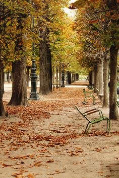 Gardening Autumn - paris-photo-automne - With the arrival of rains and falling temperatures autumn is a perfect opportunity to make new plantations Tuileries Paris, Paris In Autumn, Paris Ville, I Love Paris, Jolie Photo, Paris Photos, Places To See, Travel Photography, Paris Photography