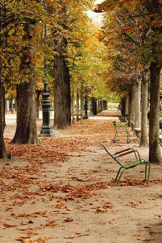 Autumn in the Tulleries....Paris